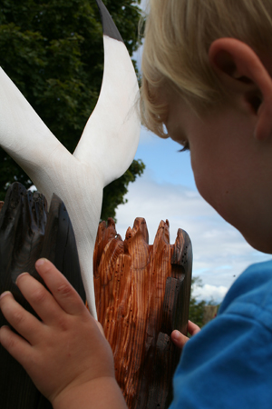 Kieran looking at the gannet